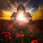 Memorial Day in Flanders fields